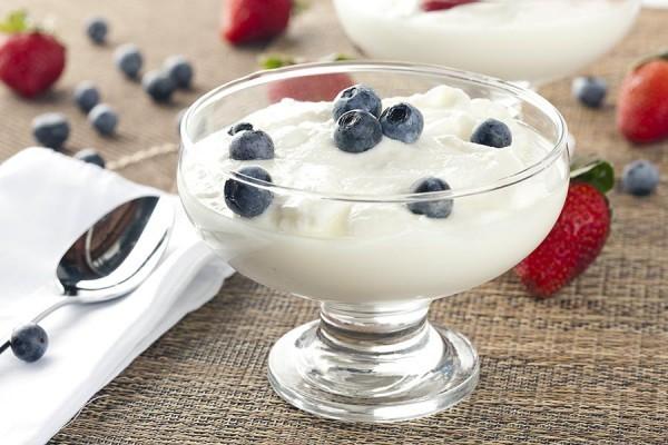 blog_2015-7-21_protein_yogurt-600x400
