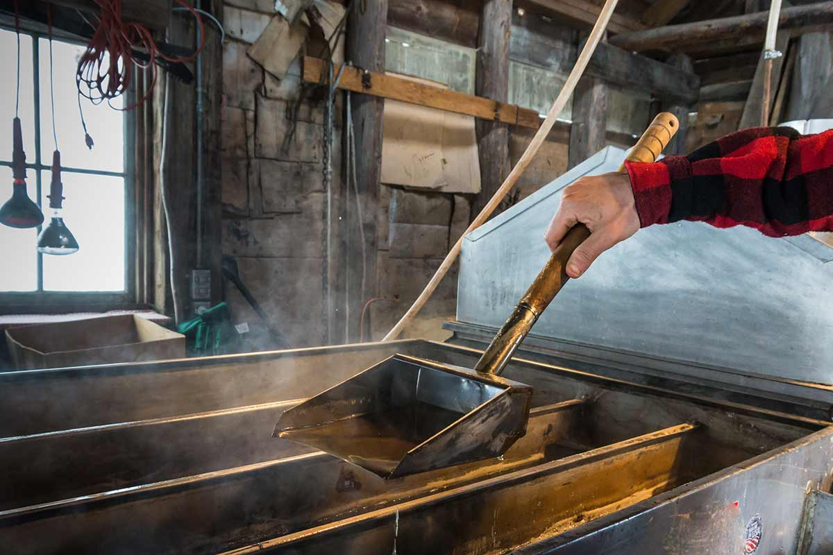 homme travaillant à une chaudière évaporant la sève d'érable pour fabriquer du sirop d'érable