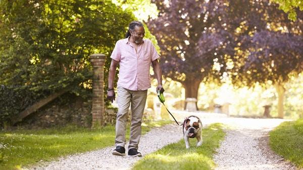 homme promenant un chien